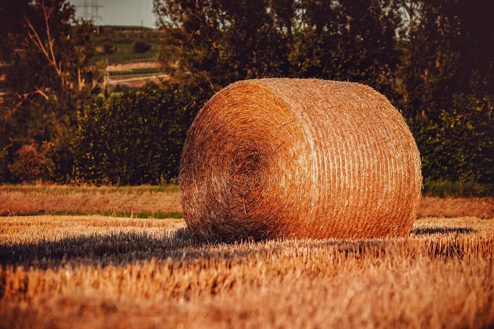 hay-bales-3539679_1280